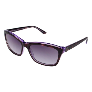 Brendel 906036 Sunglasses