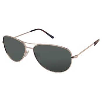 Ann Taylor AT0913 Sunglasses