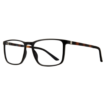 Brooklyn Heights Adelphi Eyeglasses