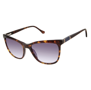 Buffalo David Bitton BWS005 Sunglasses