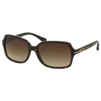 Coach HC8116 Sunglasses