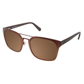 BMW B6518 Sunglasses