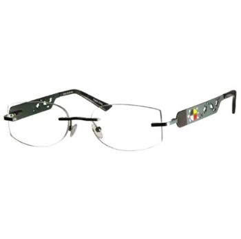 Native Visions Turtle Eyeglasses