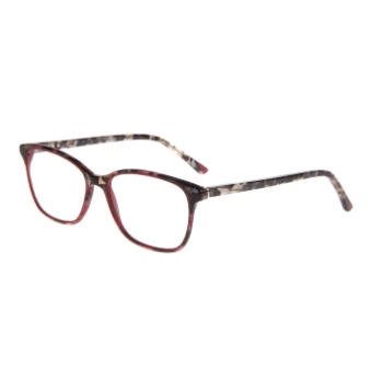 Quill Ani Eyeglasses